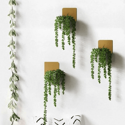 Christophe - Modern Wall Planter