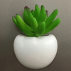 Mini Fridge Magnet Planter