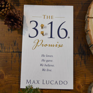 NEW! The 3:16 Promise - by Max Lucado