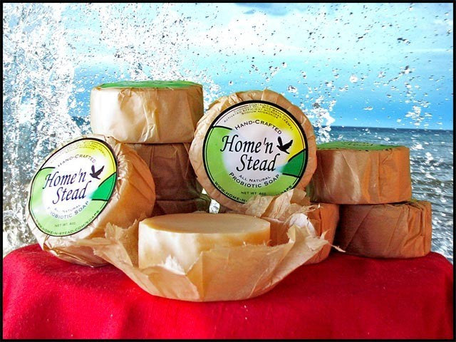 All-Natural Probiotic Soap - 3 Bars-thatfamilyshop.com