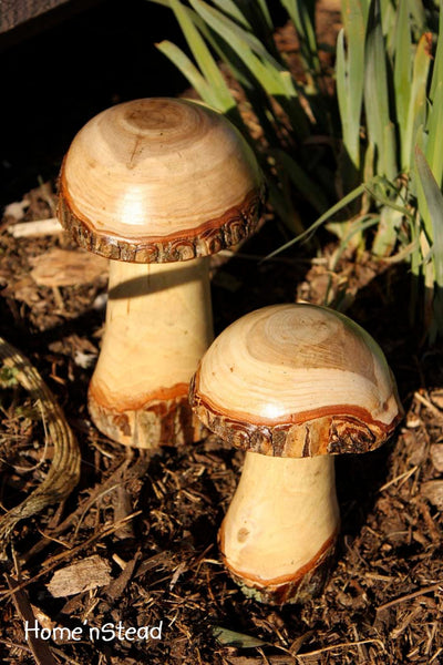 Log Mushrooms (Set of 2) Garden Gift Lawn Ornaments Display-thatfamilyshop.com
