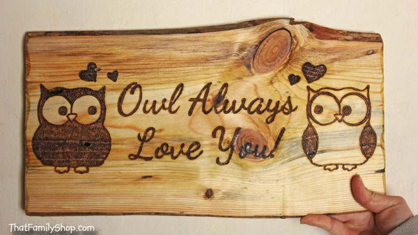 Owl Plaque, Cute Rustic Personalized Wall Gift Art - thatfamilyshop.com