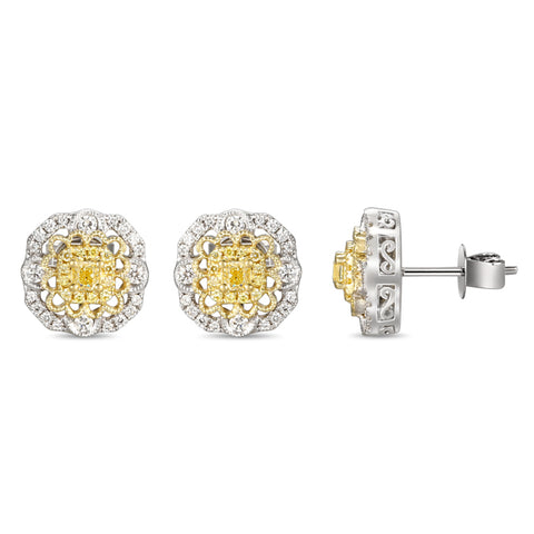 6F059291AUERYD 18KT Yellow Diamond Earring