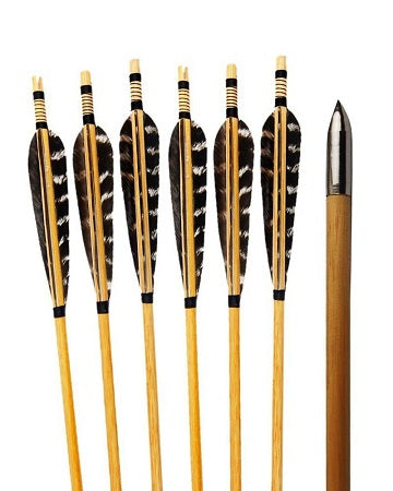 Feather Wooden Arrows
