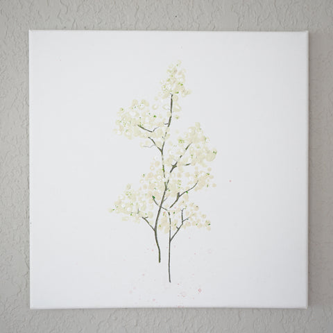 FOTW Baby's Breath Painting