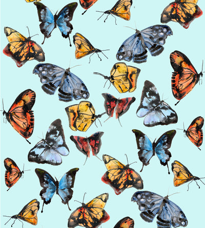 Butterflies on Tiffany Blue Wallpaper