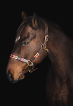 Load image into Gallery viewer, The Polo Collection: Halter
