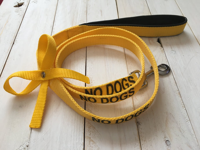 The Yellow Ribbon Leash