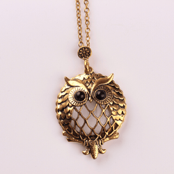 Owl Magnifying Necklace