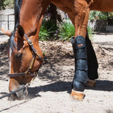 Far Infrared Therapeutic Wraps - Far Infrared Therapeutic Products - Equine Comfort Products