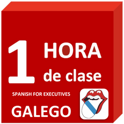 Galego - Language lesson : 1 hour. Spanish for Executives