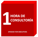 Consultancy: 1 hour - Spanish for Executives
