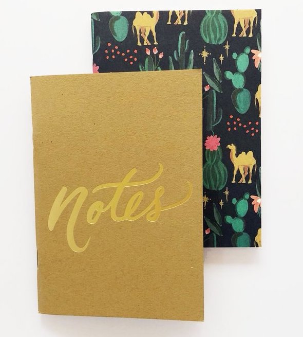 Notes Pocket Notebooks Set