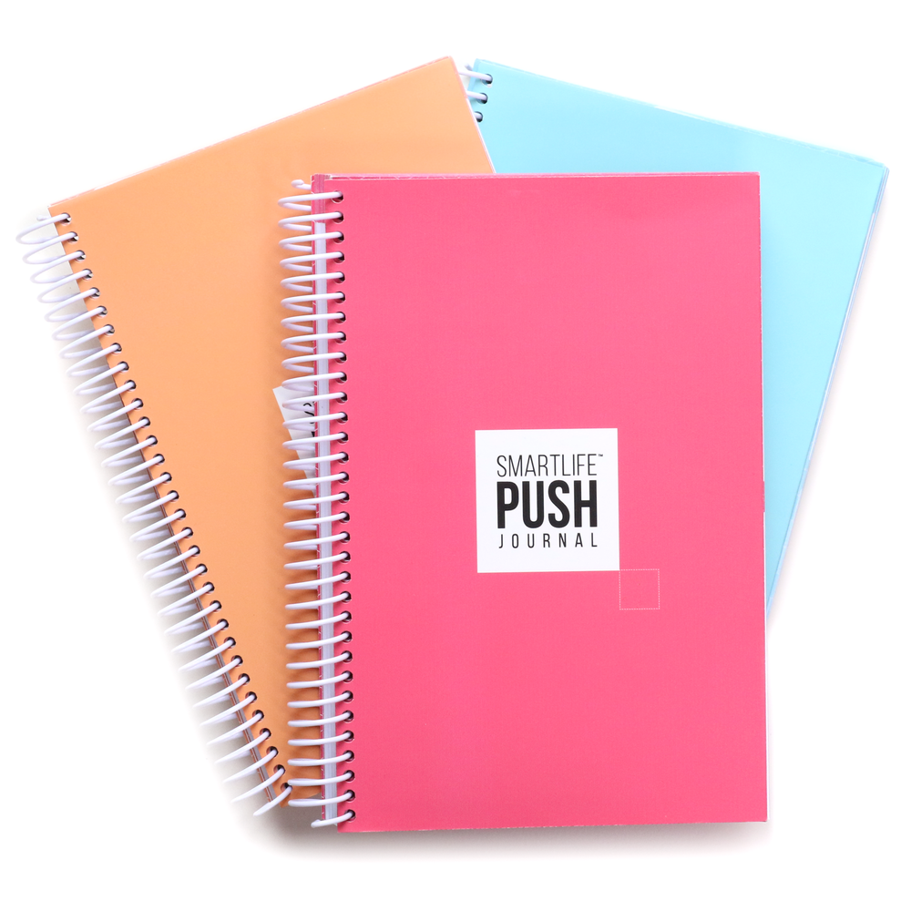 SMART LIFE the Push Journal 90 Day GOAL 3pcs - PACK - Aqua Marine/Fuchsia/Sherbet