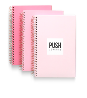 PUSH Journal pink ombre