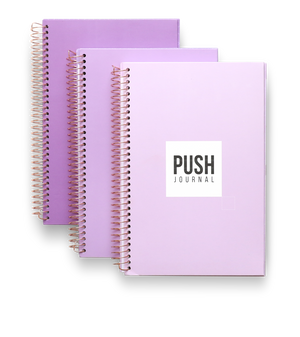 PUSH Journal purple ombre