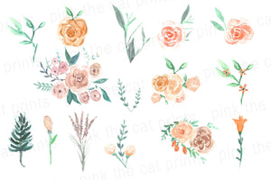 Watercolor Flowers Peach Mint Green Clipart