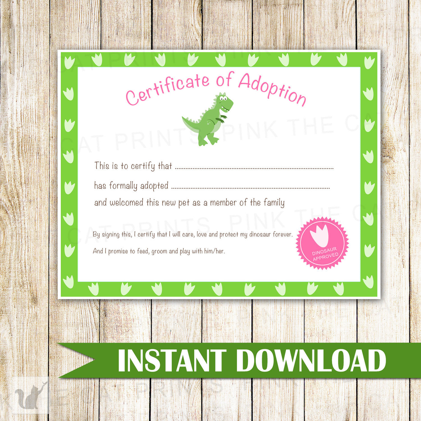 Certificate Of Adoption Dinosaur Birthday Party Pink The Cat