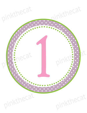 12 Month Birthday Banner Pink Purple