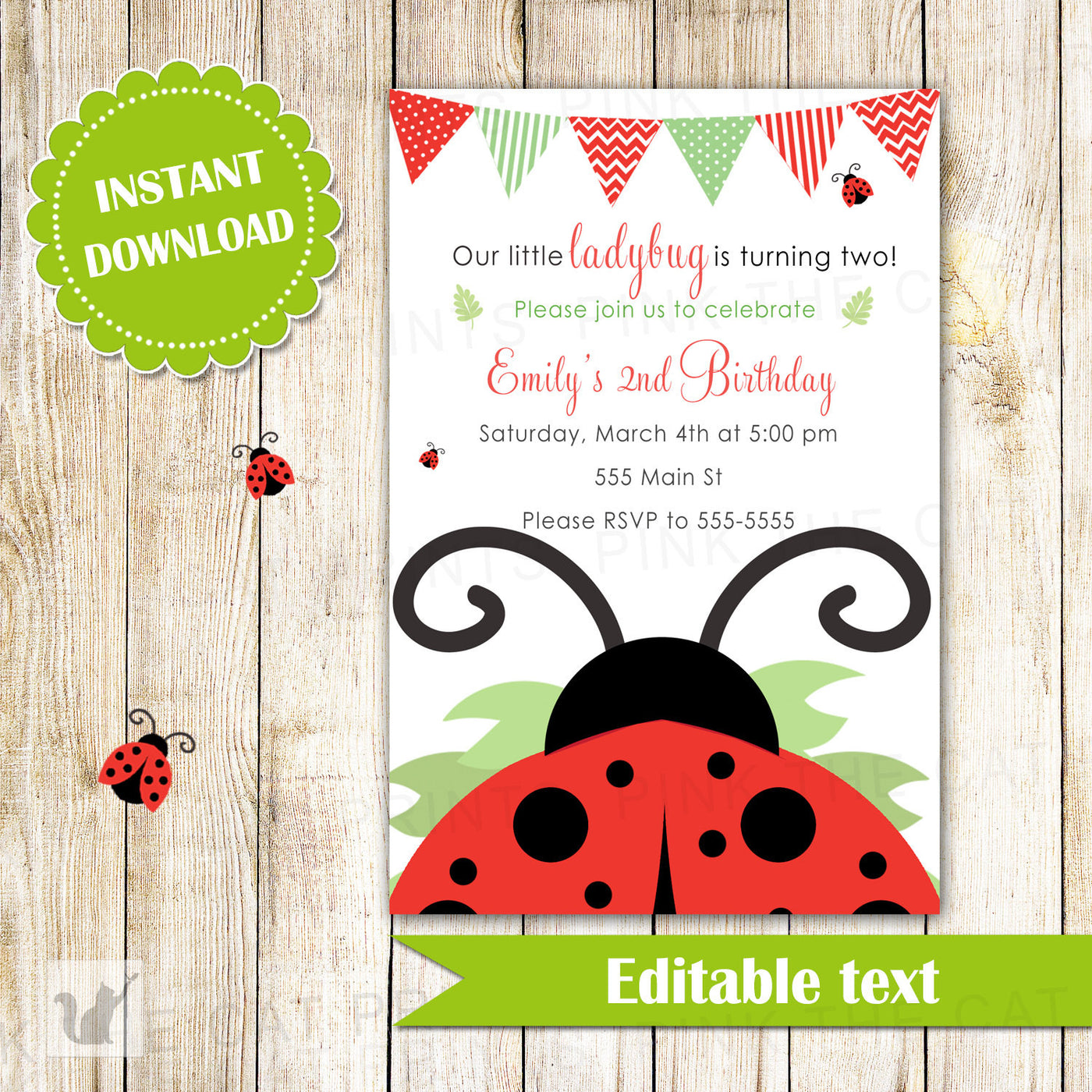 Ladybug Invitation Girl Birthday Party Red Pink The Cat