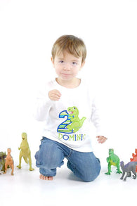Boys Birthday Shirt,T rex Dinosaur Shirt, Boys Birthday Dinosaur Shirt,Appliqué Embroidered Shirt Bodysuit