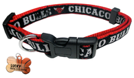 Chicago Bulls Basketball Dog or Cat Collar with FREE Personalized Dog Tag for Pets with Name & Number [Multiple Collar Sizes Avl: S,M,L] - EliteFanCo
