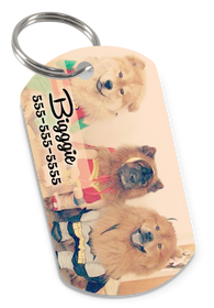 Create Your Own Custom Pet ID Tag for Dog or Cat with Pets Name, Contact Number & Custom Background | ElitePetFan.com
