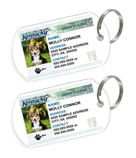 Kentucky Driver License Custom Pet ID Tags - Dog or Cat ID Tag - Personalized - US Company