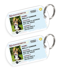 Massachusetts Driver License Custom Pet ID Tags - Dog or Cat ID Tag - Personalized - US Company