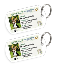 Wisconsin Driver License Custom Pet ID Tags - Dog or Cat ID Tag - Personalized - US Company