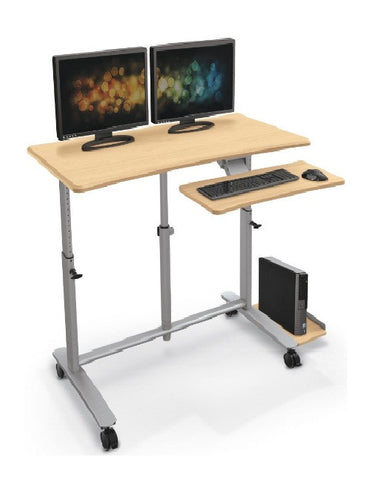 Ergo Easy Workstation