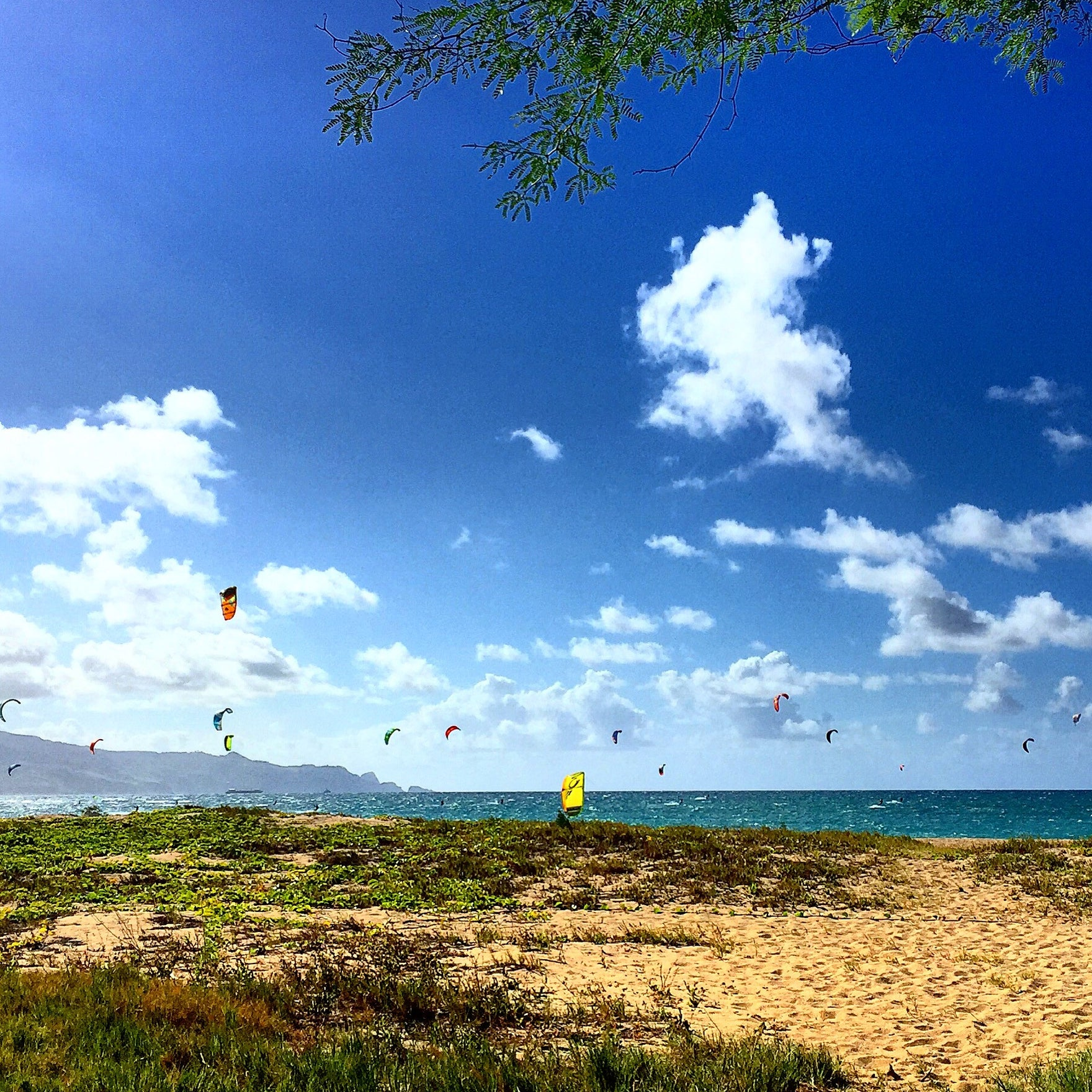 Maui, Hawaii - The Best Kiting Destination In The World