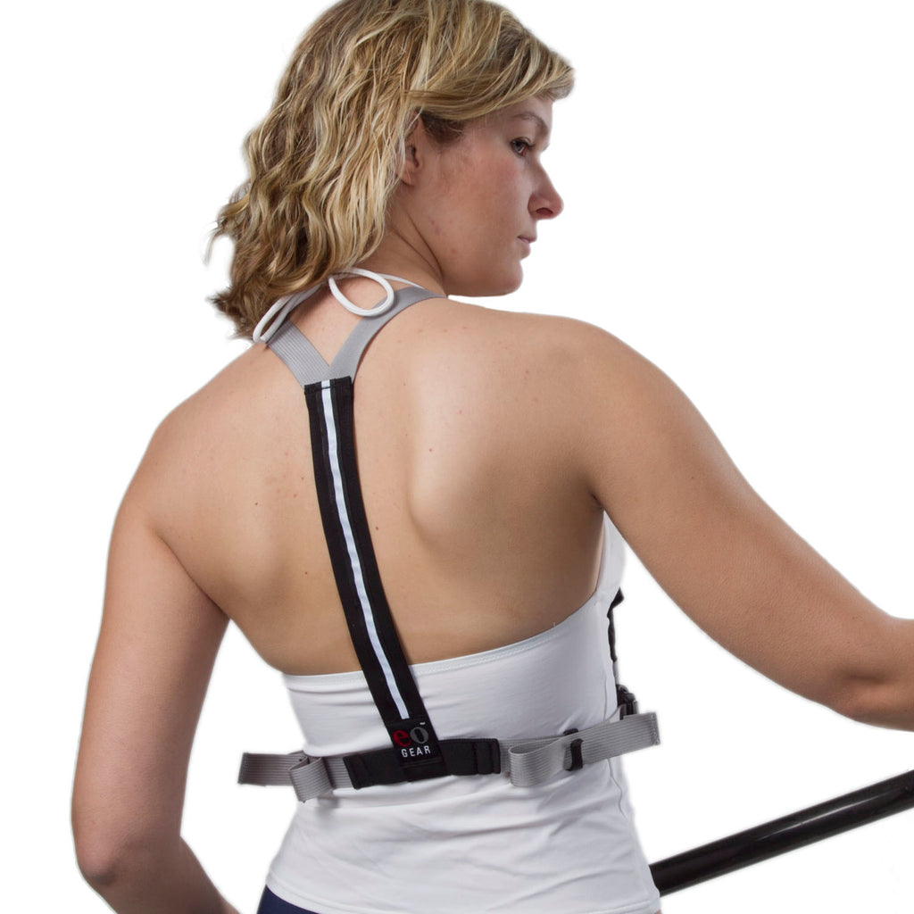 Back view of the Y-Harness