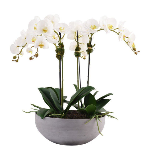 Small Traditional White Artificial Orchid Arrangement (Gray Sandstone Pot)
