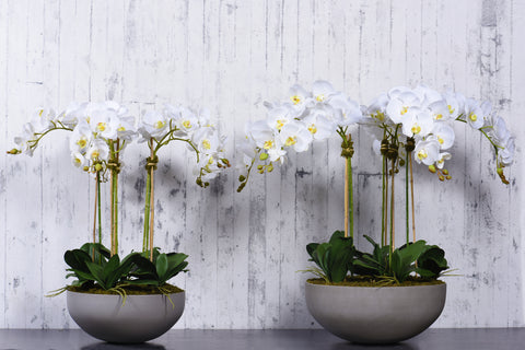 Artificial Orchids, Silk Orchids, Fake Orchids