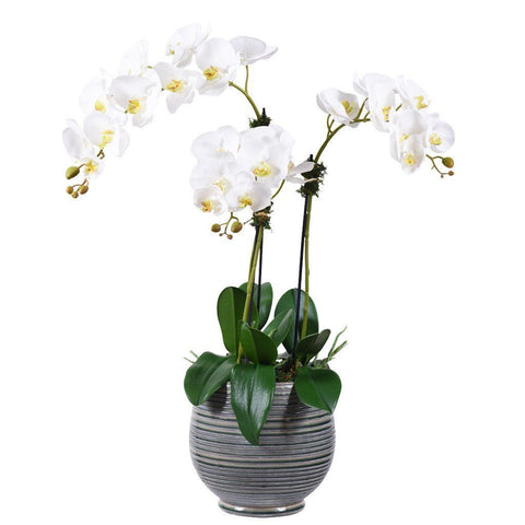 Extra Large White Artificial Orchid Arrangement (Gray Ceramic Pot)