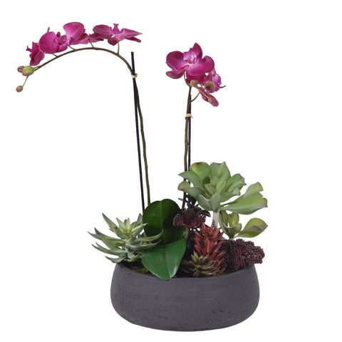 Medium Modern Purple Artificial Orchid & Artificial Succulent Arrangement (Black Concrete Pot)