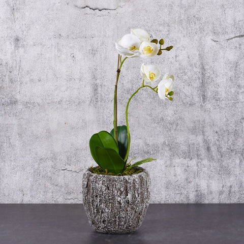 Mini White Artificial Orchid Arrangement (Natural Looking Pot)