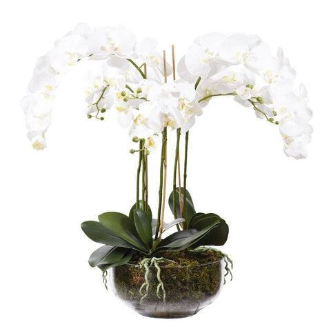 Artificial White Orchid in a clear glass frame