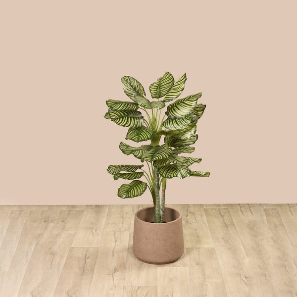 Artificial Calathea Tree Bloomr Artificial Flowers & Artificial Trees
