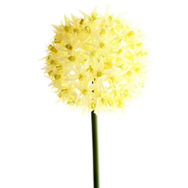 Allium Bloomr Home Artificial Flowers and Trees