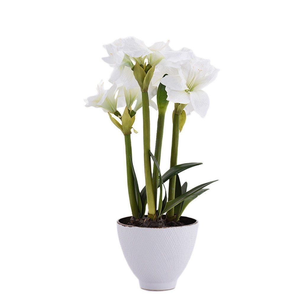 Amaryllis Bloomr Home Artificial Flowers and Trees