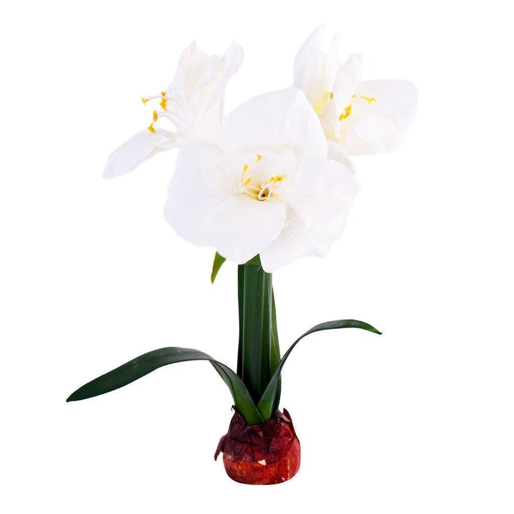 Amaryllis Bloomr Artificial Flowers & Artificial Trees