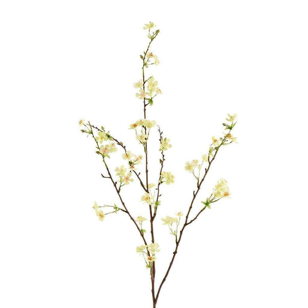 Anisodentia Bloomr Artificial Flowers & Artificial Trees