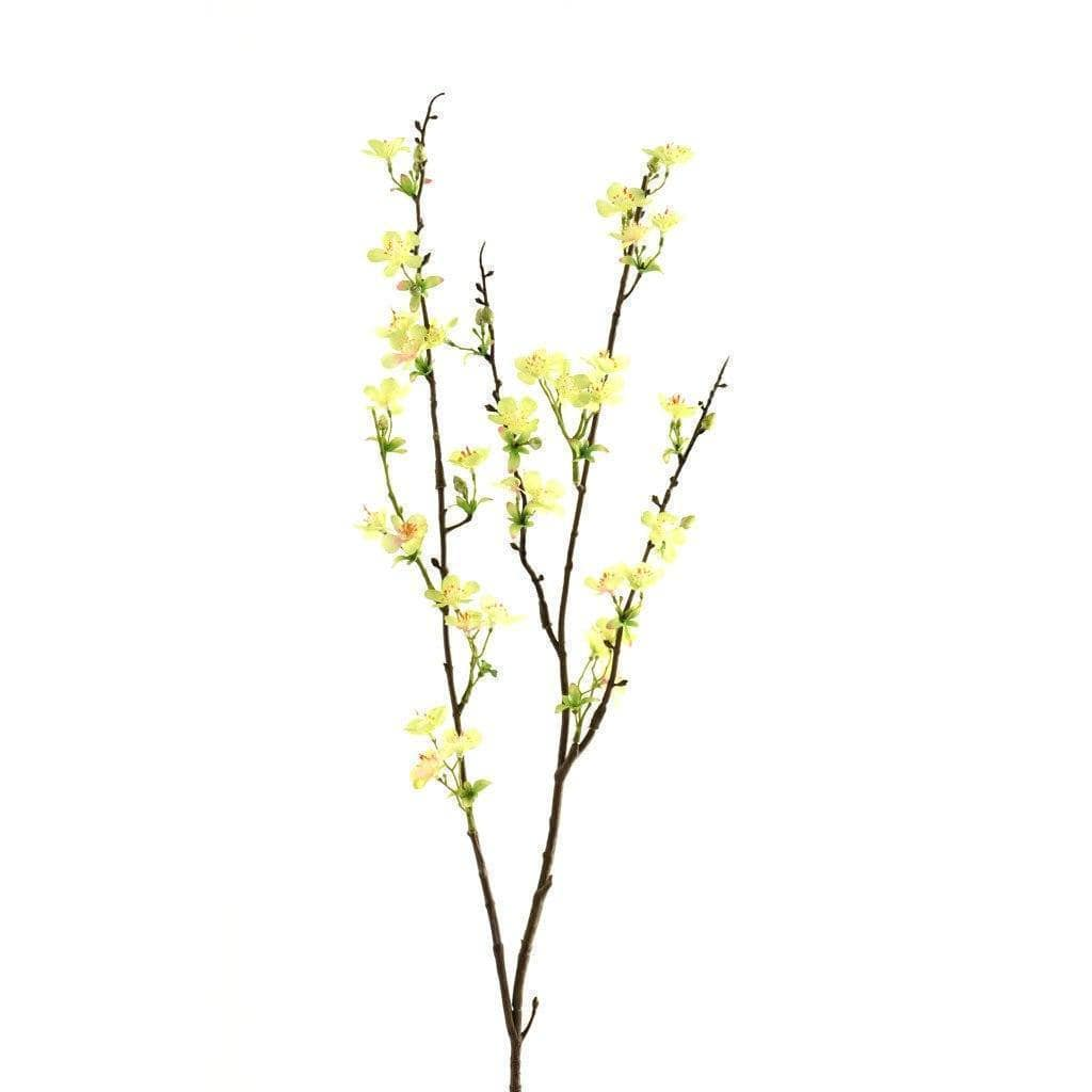 Anisodentia Bloomr Home Artificial Flowers and Trees