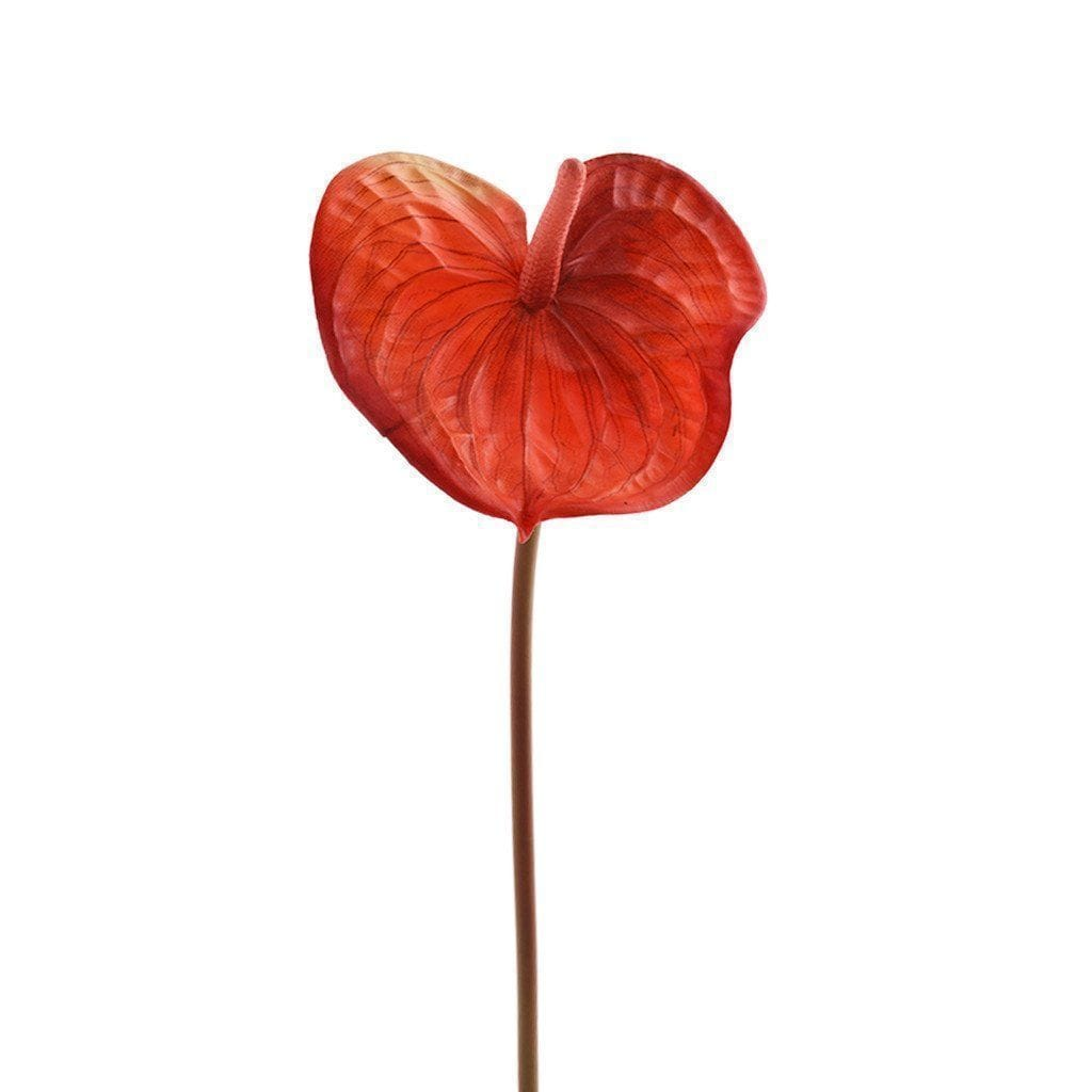 Anthurium Bloomr Home Artificial Flowers and Trees