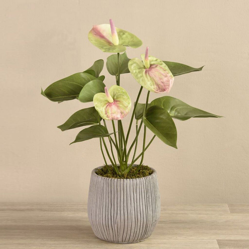 Anthurium Plant Bloomr Artificial Flowers & Artificial Trees