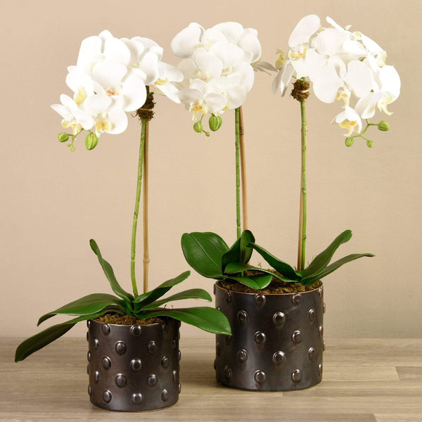 Artificial Orchid Arrangement Bloomr Artificial Flowers & Artificial Trees