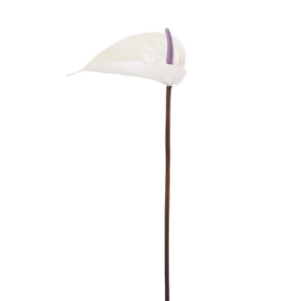 Anthurium Stem Bloomr Home Artificial Flowers and Trees