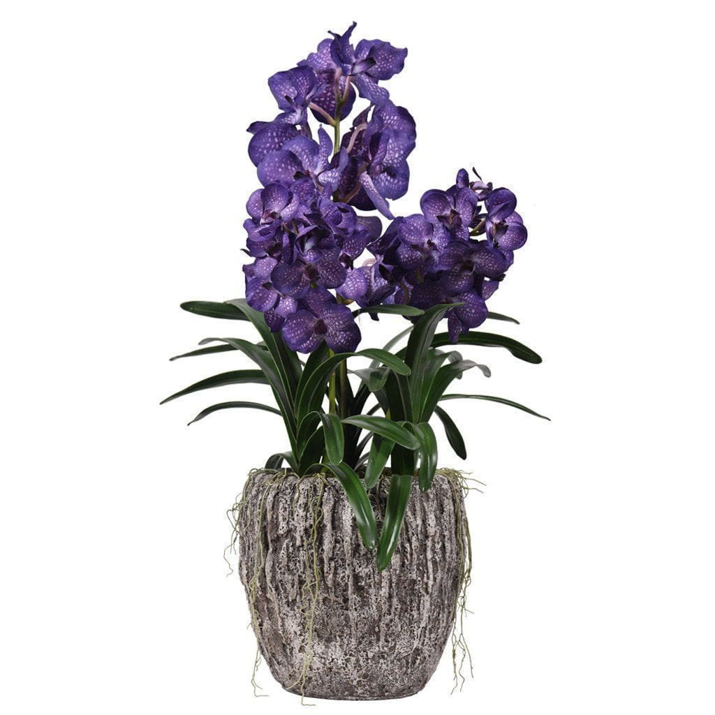 Earthy Vanda Orchid Arrangement Bloomr Home Artificial Flowers and Trees